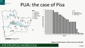 Agricoltura periurbana a Pisa